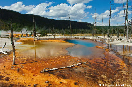 Black Sand basin, Parc National de Yellowstone, État-Unis