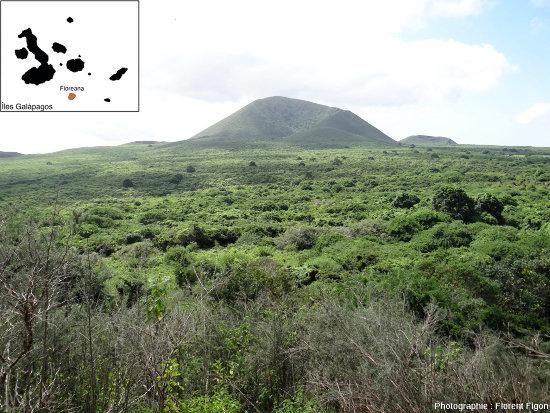 Cônes de cendres de l'ile Floreana colonisés par une végétation dense lors de la saison humide