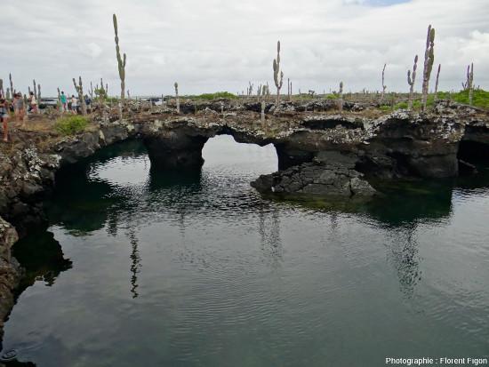 Los tuneles, tunnels de lave côtiers effondrés et en partie immergés au Sud de l'ile Isabela