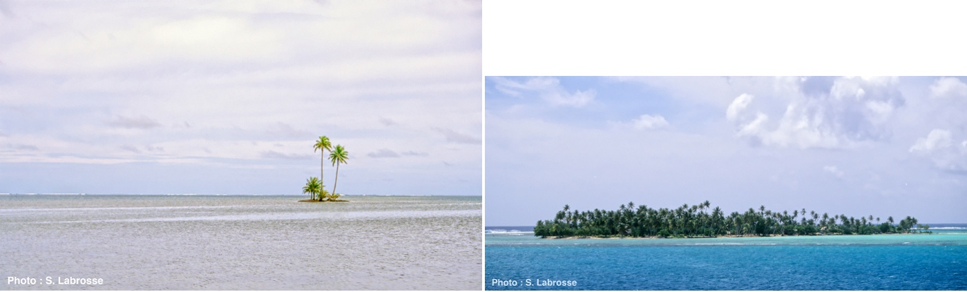 Cocotiers sur des îlots (motu en Tahitien)