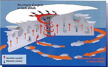 Coupe schématique de la structure d'un cyclone