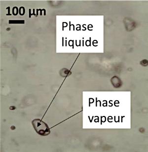 Inclusion fluide biphasique dans un quartz