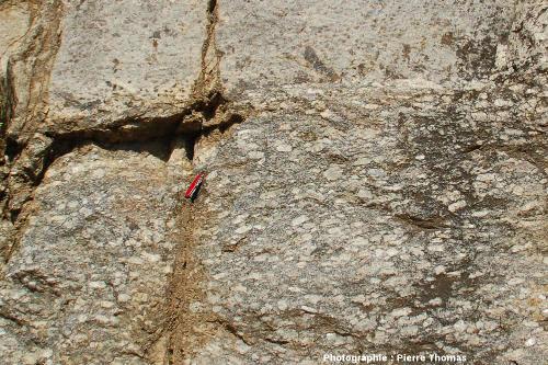 Gros plan sur un affleurement du complexe granitique d'Ansignan (Pyrénées Orientales)