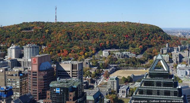 Vue du Mont Royal depuis le centre ville de Montréal (Québec, Canada)