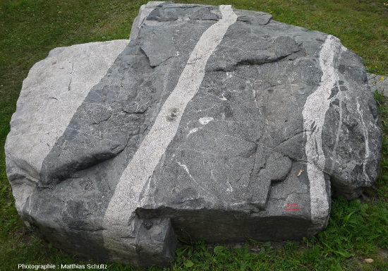Bloc montrant plusieurs phases successives de filons magmatiques se recoupant successivement, et recoupant tous la roche magmatique la plus sombre (gabbro) et en arrachant des enclaves, Mont Royal (Montréal)