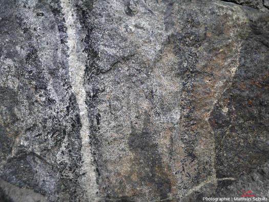 Détail de plusieurs filons successifs parallèles (verticaux), Mont Royal, Montréal (Québec, Canada)
