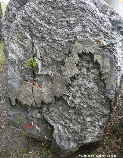 Bloc de marbre impur, Université de Montréal (Québec, Canada)