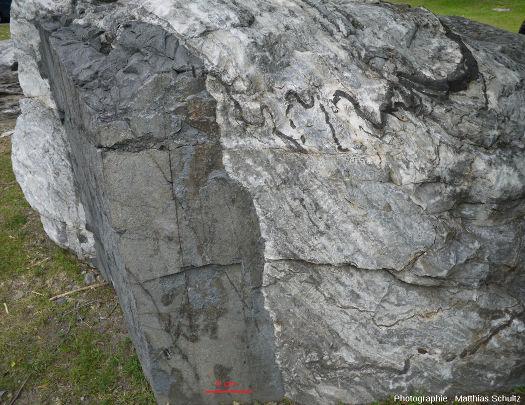 Bloc de marbre impur affecté par des filons de roche magmatique grisâtres, Université de Montréal (Québec, Canada)