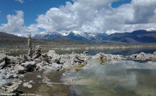 Tufas émergés du lac Mono, Grand Bassin, Californie