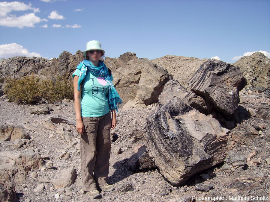 Blocs d'obsidienne et de ponces au sommet du mont Panum, au Sud du lac Mono