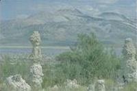 Les mêmes tufas du lac Mono en 1995