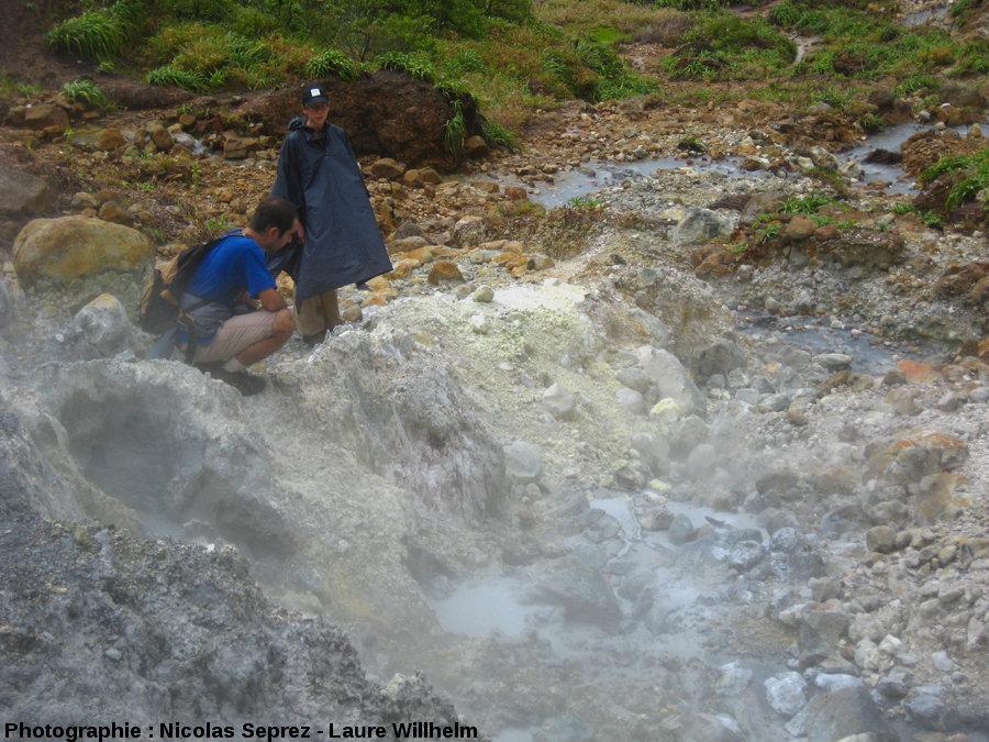 Une source d'eau chaude, vallée de la Désolation, Dominique (Antilles)