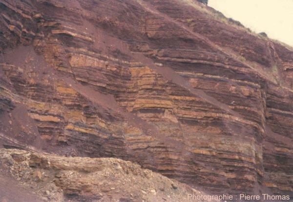 Vue rapprochée de l'affleurement du Mas d'Alary après débasculement des strates
