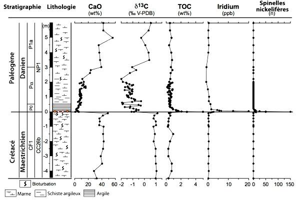 Stratigraphie et géochimie des sédiments de la section GSSP d'El Kef, Tunisie