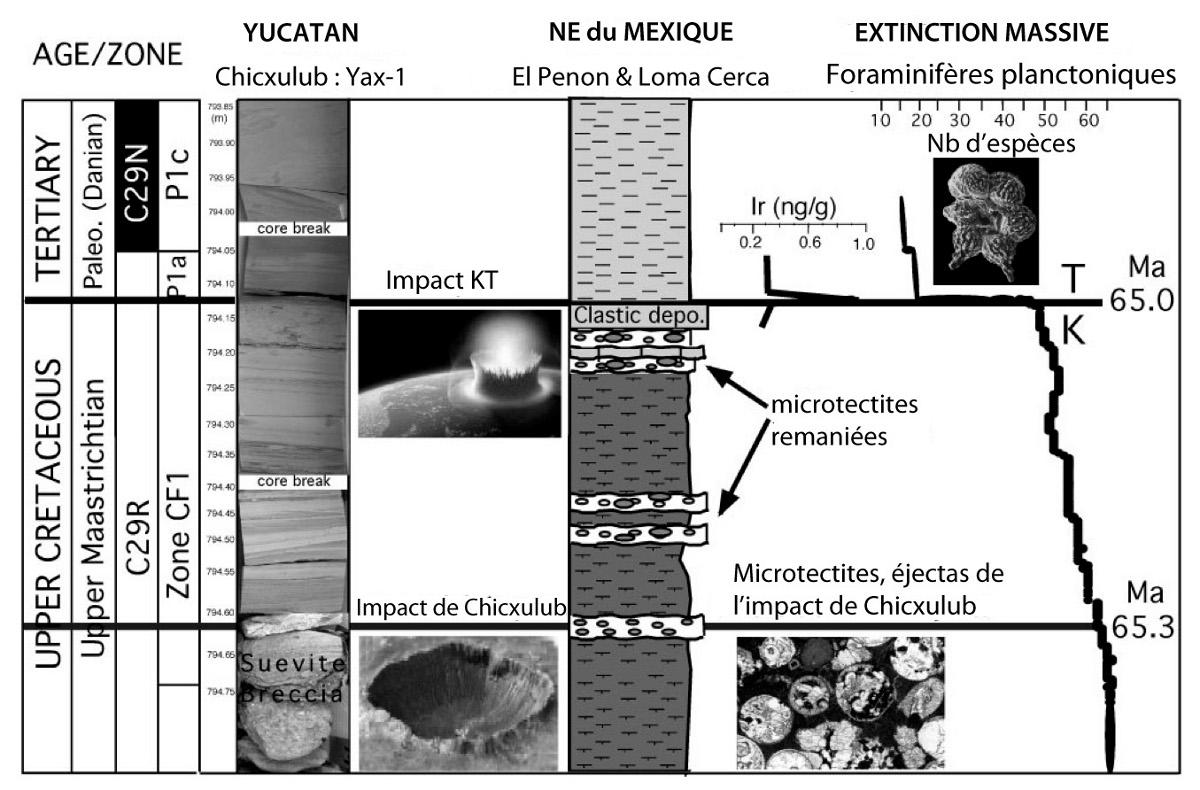 Proposition de datation par corrélation du pic d'iridium retrouvé à Chicxulub et au NE du Mexique