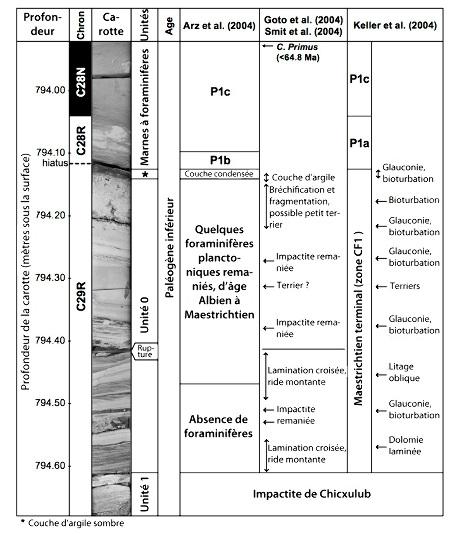 Interprétations comparées de la carotte Yaxcopoil-1 par plusieurs auteurs