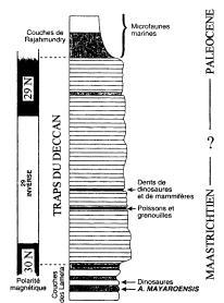 Coupe géologique des trapps du Deccan et l'échelle des inversions magnétiques