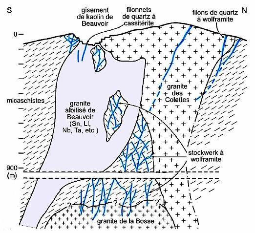Coupe interprétative du complexe granitique d'Échassières