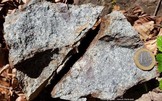 Brèche spilitique de Schrimeck, riche en éléments basaltiques