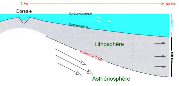 Variation d'épaisseur de la lithosphère océanique en fonction de son âge