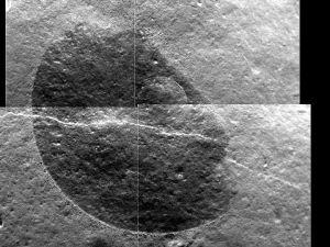 Gros plan (10 x 8cm) d'un polissage sur cette roche lisse et son filonnet