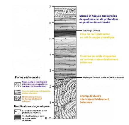 Log stratigraphique synthétique de Meridiani Planum basé essentiellement sur les falaises de Burns Cliff, dans le cratère Endurance