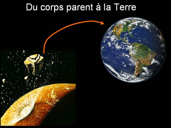 Du corps parent à la Terre