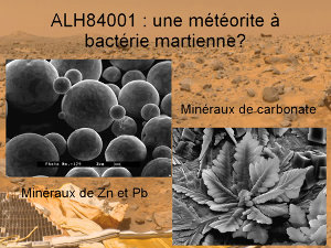 Formes minérales pouvant être confondues à des structures biologiques