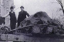 Météorite Willamette (15,5 tonnes), découverte en 1902