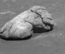 Le rocher Wopmay (environ 1m de long)