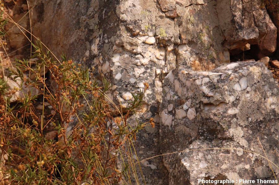 Détail du conglomérat de base du Trias, niveau minéralisé en cuivre et exploité dans la mine dans la mine de Cap Garonne