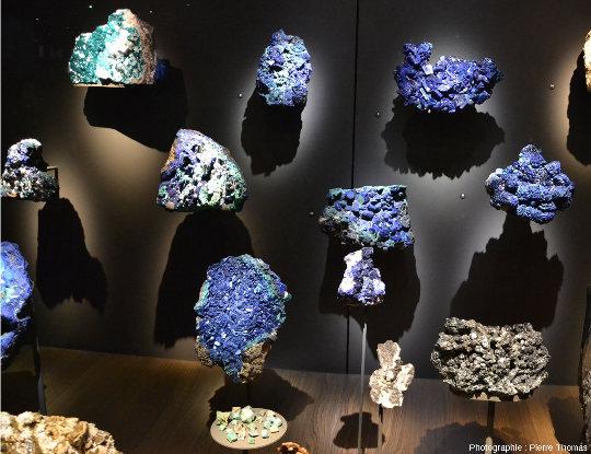 Vitrine d'échantillons d'azurite et de cuprite provenant de Chessy-les-mines, exposés au Musée des Confluences, Lyon
