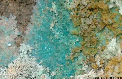 Encroutements de sels de cuivre (probablement des sulfates) ayant cristallisé dans des zones à l'abri de la pluie dans la carrière Saint Antoine