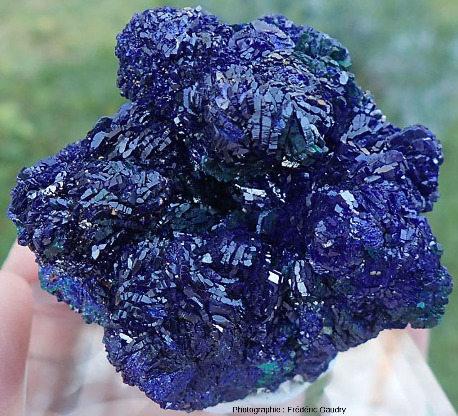 Fleur de mine d'azurite quasiment dépourvue de grains de quartz et à la surface parfaitement cristallisée, mais avec une morphologie cristalline différente de celle de la photo précédente