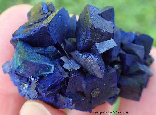 Groupe de cristaux d'azurite parfaitement formés