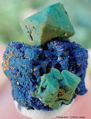 Cuprite octaédrique épigénisée en malachite sur azurite