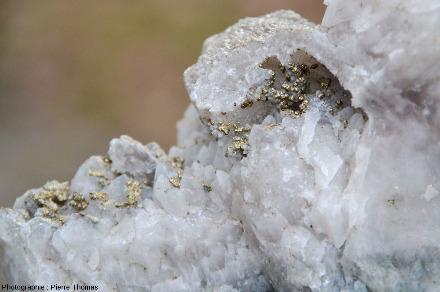 Détail de l'échantillon de quartz blanc filonien géodique contenant des cristallisations tardives de pyrite
