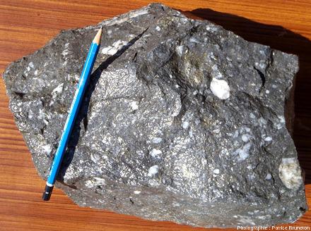 Bloc de minerai bréchique riche en sulfures (pyrite, mispickel, galène argentifère abondante, et blende) provenant de la mine de Puy-Roux