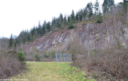 État en mars 2018 de l'ancienne mine à ciel ouvert des Renardières, partiellement remblayée et naturellement revégétalisée