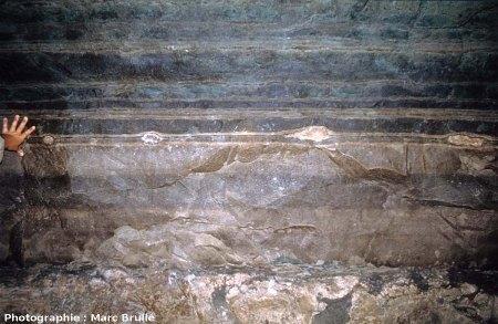 Quatre mini-stromatolithes (sans hydrocarbures) interstratifiés dans les marnes vertes de la paroi d'une galerie de la Mine des Rois, Dallet