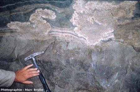 Stromatolithes aux formes complexes, et déflexions associées des couches sous- et sus-jacentes, Mine des Rois, Dallet