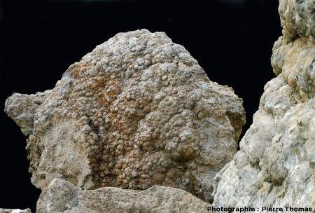 Stromatolithe éboulé dans une galerie de la Mine des Rois, Dallet
