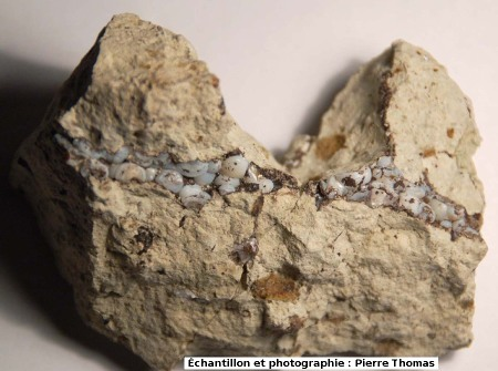 Petit filon de lussatite (vu en section) recoupant un calcaire, Mine des Rois, Dallet