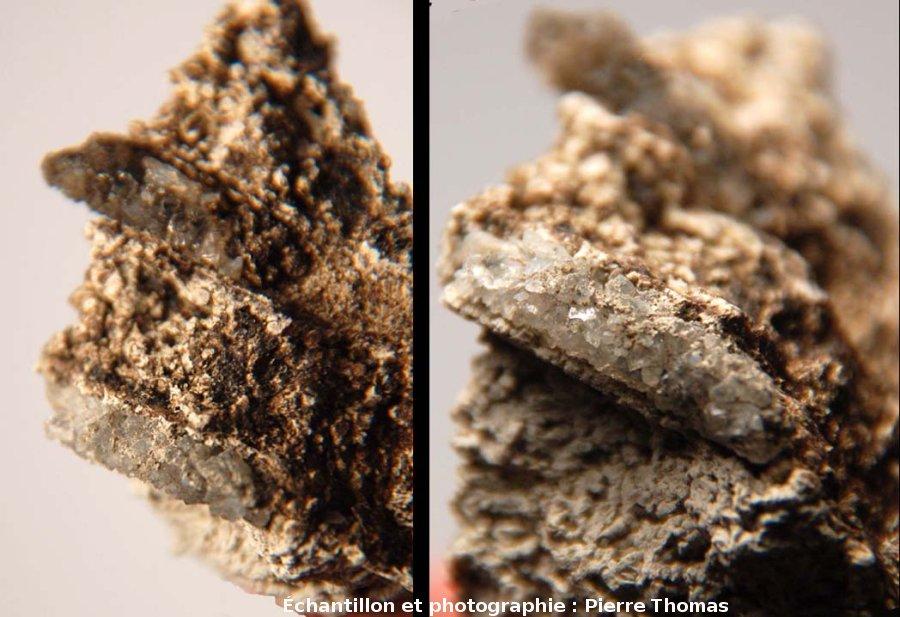 Tubes de phryganes remplis de quartz, Mine des Rois, Dallet