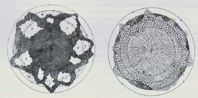 Les cavités enflammées ou le noyau igné de Moro