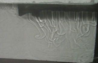 Panaches descendants par refroidissement surfacique
