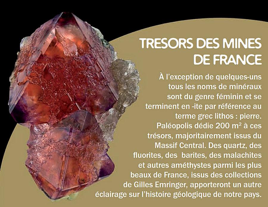 Extrait du dossier de presse de Paléopolis présentant l'exposition permanente de minéraux