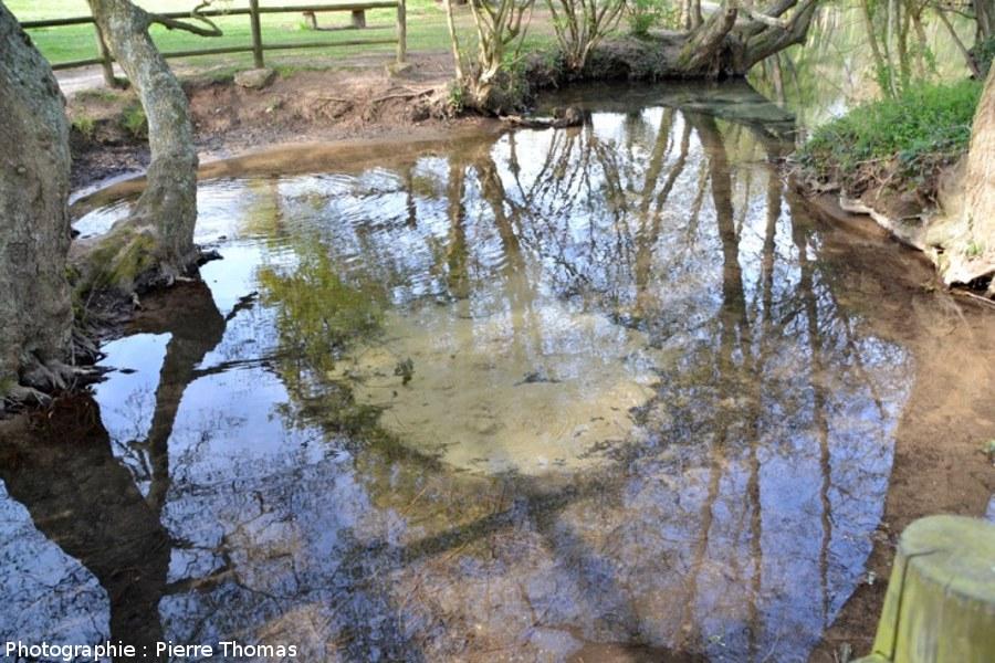Vue globale du bassin appelé les Fontenils sur les cartes IGN