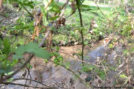 Autre vue du petit ruisseau se jetant dans le bassin des Fontenils