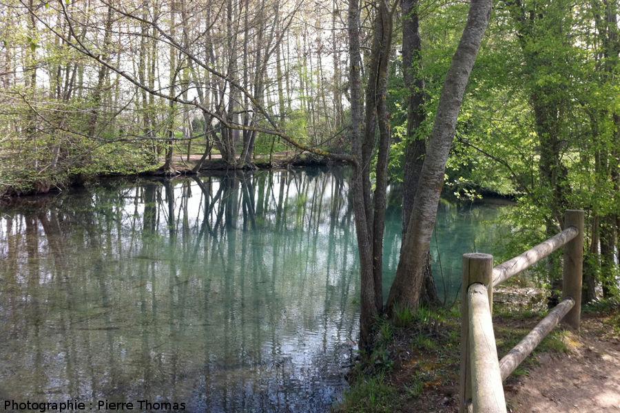 Ruisseau en aval du bassin des Fontenils, caractérisé par une très belle couleur bleue
